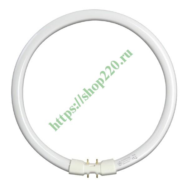 Купить Люминесцентная лампа кольцевая GE FC55W/T5/830 2GX13, D300mm 75717 по цене 709.28 р. vdl106569