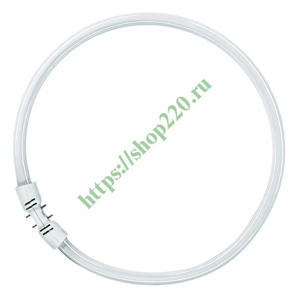 Купить Люминесцентная лампа кольцевая Osram FC 55 W/865 T5 2GX13, D300mm 4050300528564 по цене 2013.44 р. в наличии vdl13557